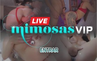 Banner Mimosas Vip Live